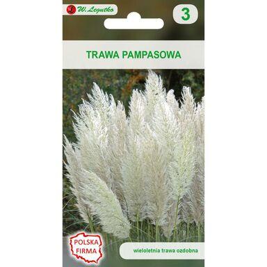 Trawa pampasowa BIAŁA nasiona tradycyjne 0.02 g W. LEGUTKO