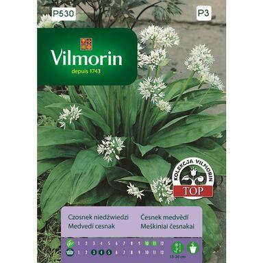 Czosnek niedźwiedzi nasiona tradycyjne 0.5 g VILMORIN