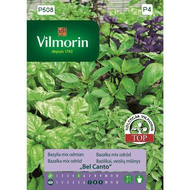Nasiona ziół BEL CANTO Bazylia mix odmian VILMORIN