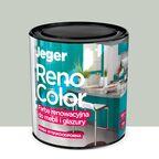 Farba renowacyjna RENO COLOR do mebli i glazury 0.45 l Inox Wysokoodporna JEGER