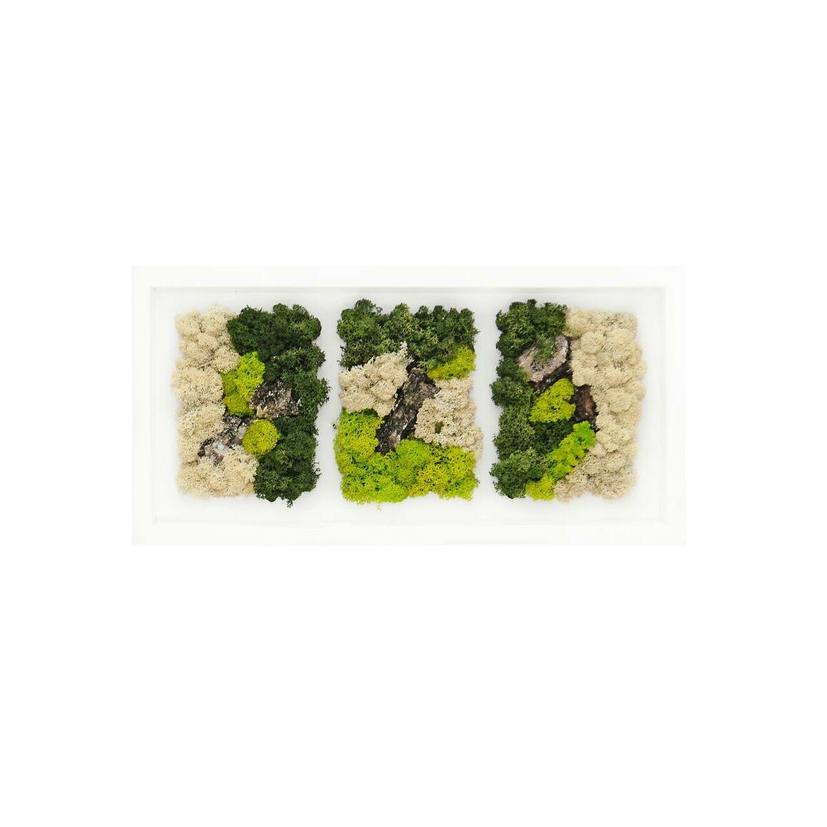 Obraz Dekoracyjny Z Mchem 53 X 26 Cm Trio Gotowe Panele I Obrazy Z Mchu W Atrakcyjnej Cenie W Sklepach Leroy Merlin