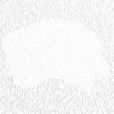 Farba elewacyjna akrylowa FASADOWA Biały ALPINA