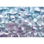 Fototapeta LIGHT BLUE 254 x 368 cm