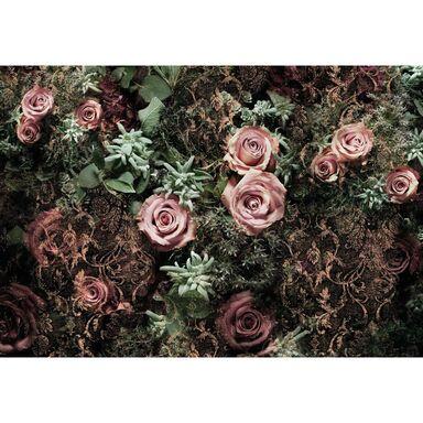 Fototapeta Velvet 368 x 254 cm Komar