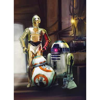 Fototapeta STAR WARS THREE DROIDS 184 x 254 cm