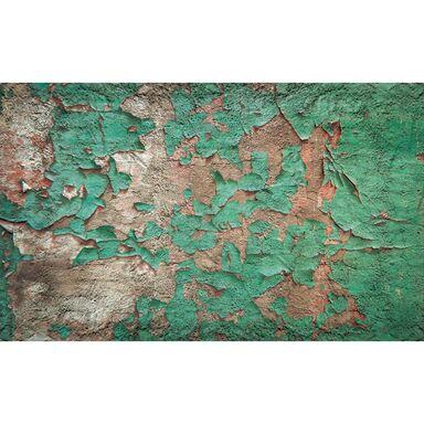 Fototapeta STARA FARBA 368 x 254 cm