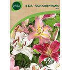 Lilia Orientalna MIX 8 szt. cebulki kwiatów GEOLIA