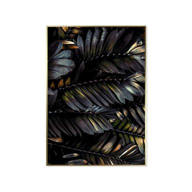 Obraz Feather 50 x 70 cm