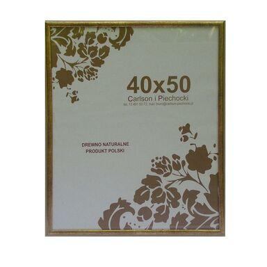 Rama RÓŻA 40 x 50 cm