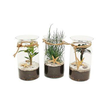 Rośliny zielone MIX szklana tuba 16 x 25 cm kompozycja morska