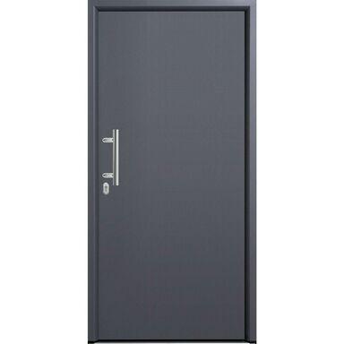 Drzwi wejściowe TPS010 HORMANN