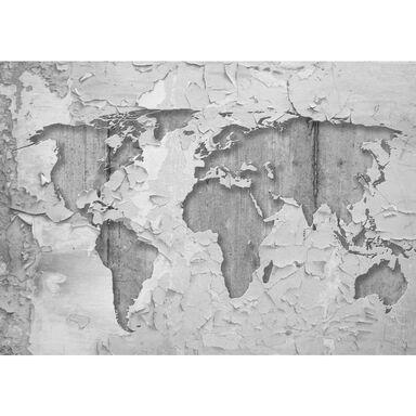 Fototapeta MAPA NA TYNKU 254 x 368 cm