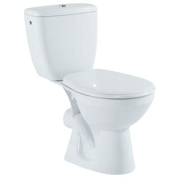 wc aspirambo leroy merlin choix de l 39 ing nierie sanitaire. Black Bedroom Furniture Sets. Home Design Ideas