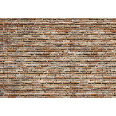 Fotografia ścienna BACKSTEIN 368 x 254 cm KOMAR