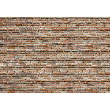 Fotografia ścienna BACKSTEIN 368 x 368 cm KOMAR