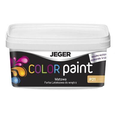 Farba dekoracyjna COLOR PAINT 1 l Exwhite Lateksowa matowa JEGER