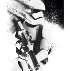 Plakat Mini STAR WARS EPISODE VII - STORMTROOPER PAINT wys. 50 cm cm x szer. 40
