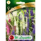Nasiona kwiatów SIGHTSEEING Przetacznik kłosowy W. LEGUTKO