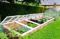 Inspekt i tunel foliowy w ogrodzie