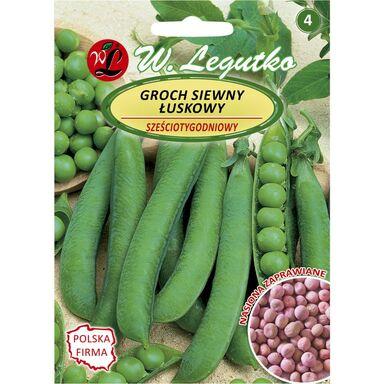 Groch siewny łuskowy SZEŚCIOTYGODNIOWY nasiona zaprawiane 40 g W. LEGUTKO