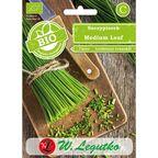 Szczypiorek nasiona BIO Medium Leaf W. LEGUTKO