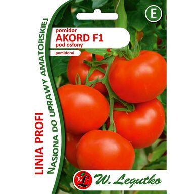 Pomidor nasiona BIO Akord F1 W. LEGUTKO