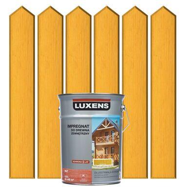 Impregnat do drewna ZEWNĘTRZNY 4.5 l Kukurydza LUXENS