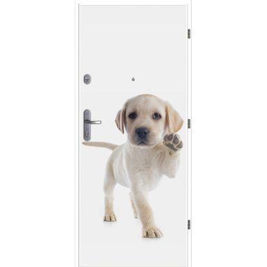 Drzwi wejściowe DEKO 07 / WX-10 80 Prawe LOXA