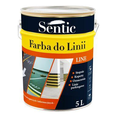 Farba do podłóg DO LINII 5 l Biała SENTIC