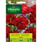 Goździk ogrodowy SZABO nasiona tradycyjne 0.5 g VILMORIN