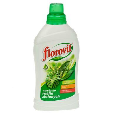 Nawóz do roślin zielonych 1 l FLOROVIT