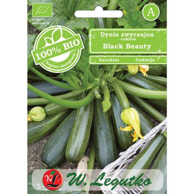 Nasiona warzyw BLACK BEAUTY BIO Dynia zwyczajna (Cukinia) W. LEGUTKO