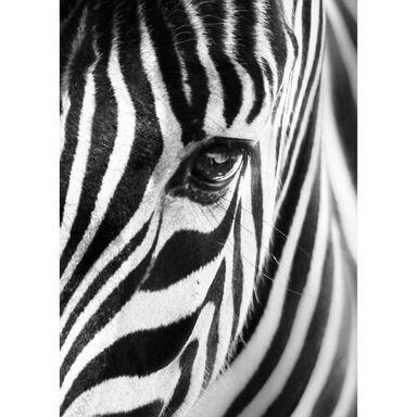 Kanwa ZEBRA BLACK&WHITE 50 x 70 cm