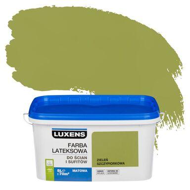 Farba wewnętrzna do ścian i sufitów EMULSJA 5 l Zieleń szczypiorkowa LUXENS