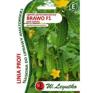 Ogórek gruntowy BRAWO F1 PROFI nasiona do uprawy profesjonalnej 20 szt. W. LEGUTKO