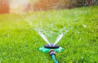 Trawnik – kiedy jest najlepszy termin na założenie trawnika?