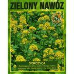 Nasiona kwiatów ZIELONY NAWÓZ 50 gGorczyca
