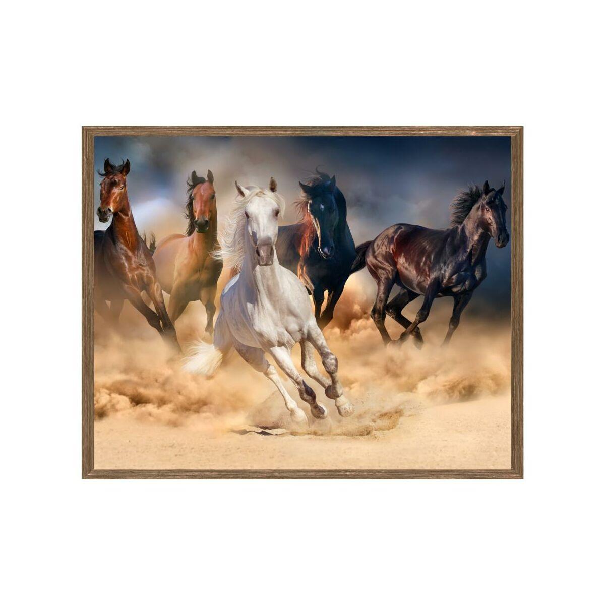 Obraz Konie 53 X 43 Cm Knor Obrazy Kanwy W Atrakcyjnej Cenie W