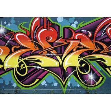 Fototapeta Graffiti 208 x 146 cm