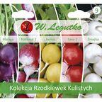 Rzodkiewka kolekcja nasion tradycyjnych W. LEGUTKO