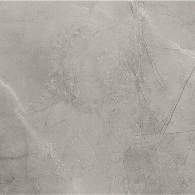 Gres szkliwiony REMOS GREY MAT 59.8 X 59.8 ARTE