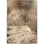 Dywan wełniany PRATUM brązowy 133 x 190 cm AGNELLA