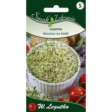 Nasiona na kiełki Lucerna W. LEGUTKO