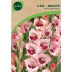 Mieczyk WINE AND ROSES 6 szt. cebulki kwiatów GEOLIA