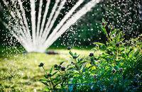 Nawadnianie ogrodu – instalacja systemu nawadniania