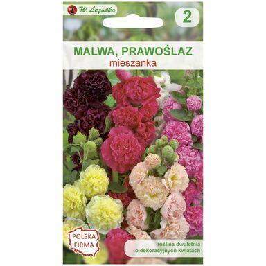 Nasiona kwiatów MIESZANKA Malwa (Prawoślaz) W. LEGUTKO