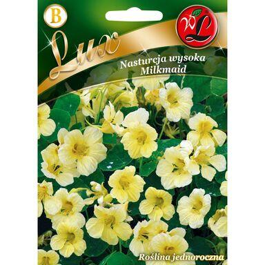 Nasiona kwiatów MILKMAID Nasturcja wysoka W. LEGUTKO