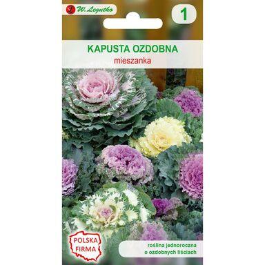 Nasiona kwiatów MIESZANKA Kapusta ozdobna W. LEGUTKO