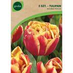 Tulipan pełny późny MOUNT TACOMA 5 szt. cebulki kwiatów GEOLIA