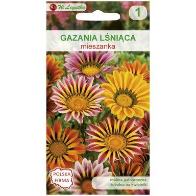 Nasiona kwiatów MIESZANKA Gazania lśniąca W. LEGUTKO